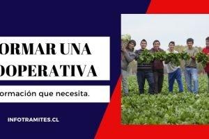 Cómo formar una cooperativa en Chile