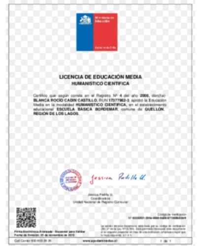 licencia de educación media