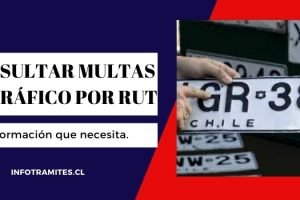 Consultar multas de tránsito por RUT